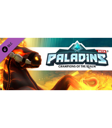 Paladins Founder's Pack