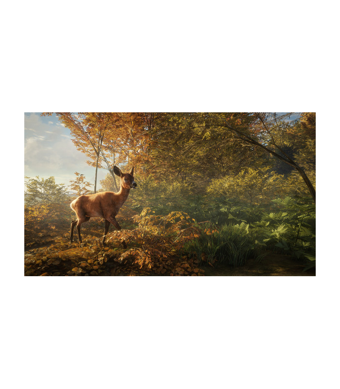 theHunter: Call of the Wild - 4