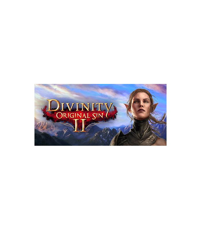 Divinity: Original Sin 2 - 1