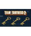 خرید کلید بازی Mann Co | Team Fortress 2