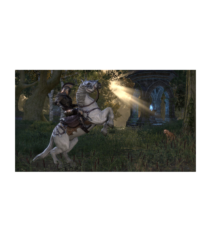 The Elder Scrolls Online: Tamriel Unlimited  - 6